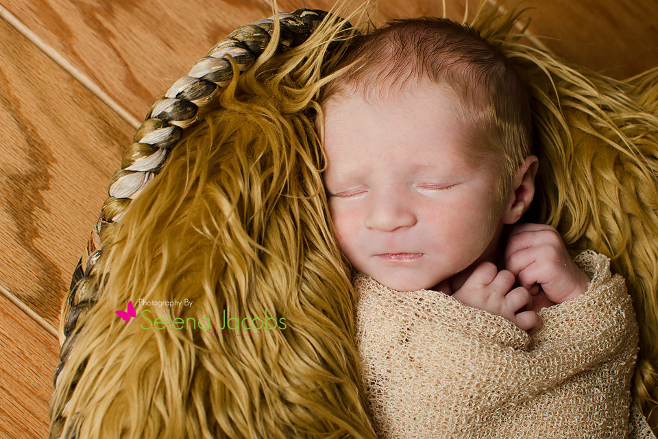 McDonough newborn photographer